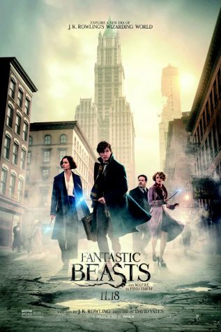Fantastic Beasts and Where to Find Them: Spoiler Free Movie Review