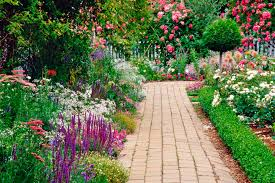 Every Mind is a Garden