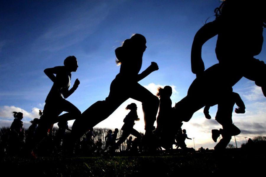 Spotlight on Boys Cross Country Team